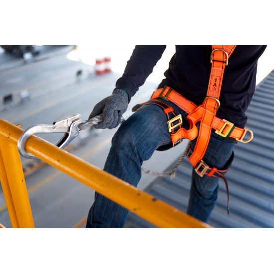 Use of Harness